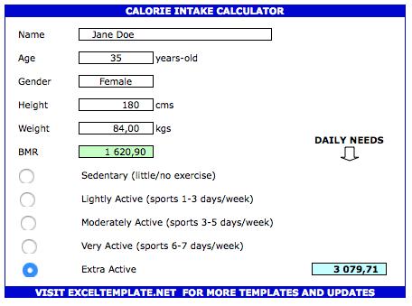 Calorie Tracker Spreadsheet intake calculator