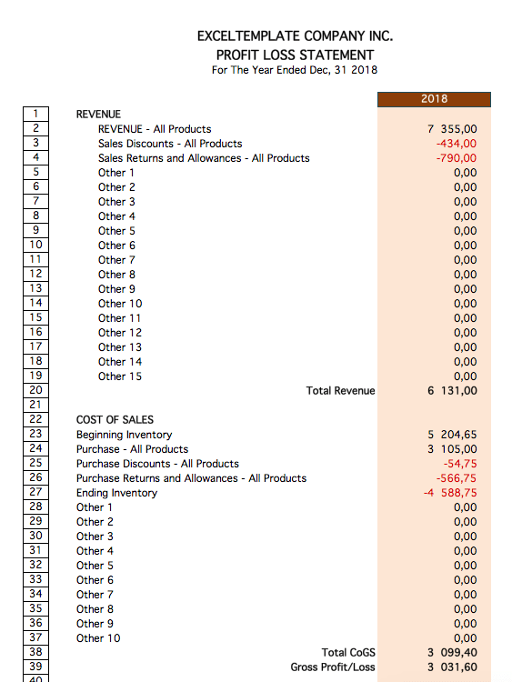 Financial Ratio Template profit loss report