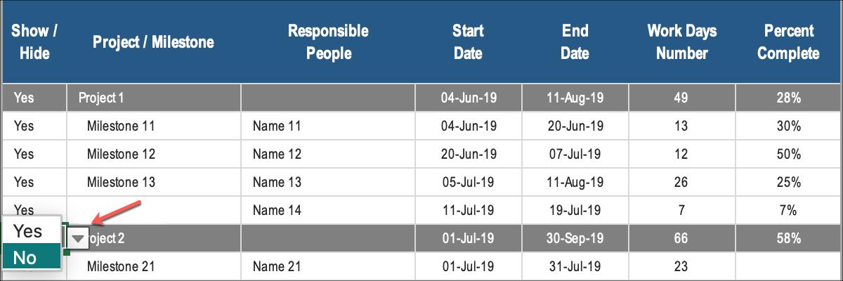 Gantt Chart for Project Management Show Hide Milestones