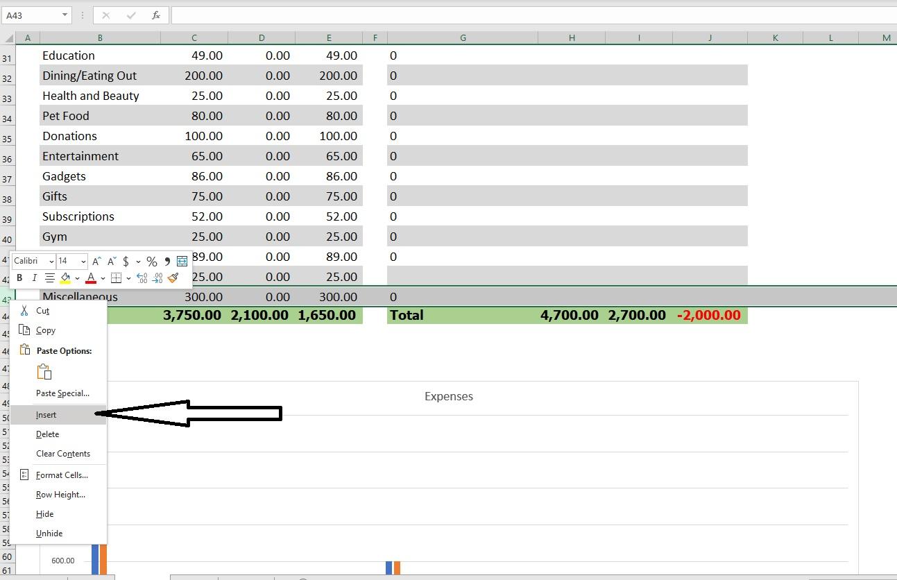 Money Goal Tracker Insert
