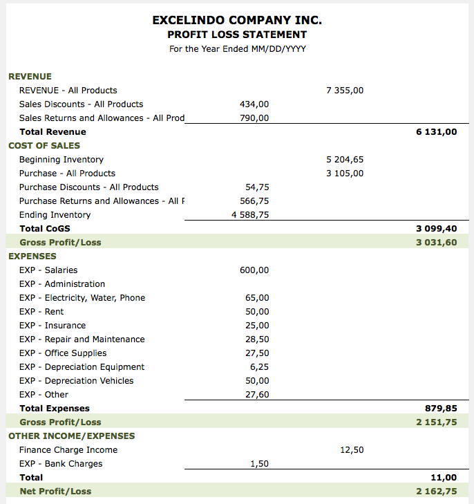 Profit and Loss Statement Template report