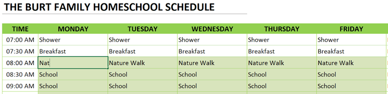 homeschool schedule make modifications